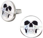 Polished Billet License Frame Bolts - Ghost Skull - Set of 2