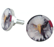 Polished Billet License Frame Bolts - Bald Eagle - Set of 2