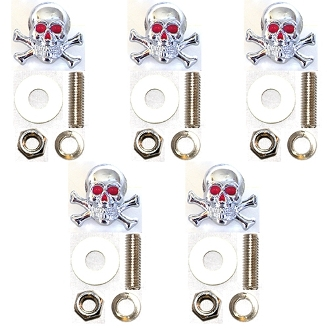 Motorcycle Windshield Bolts - Skull & Bones - 5