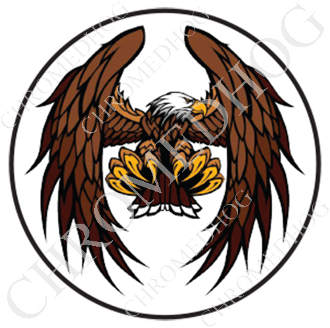 Premium Round Decal - Eagle - Flying - White