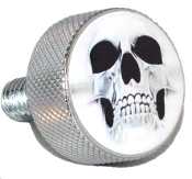 Harley Twin Cam Air Cleaner Bolt - Chrome Billet Ghost Skull