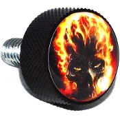 Harley Twin Cam Air Cleaner Bolt - Black Billet Flaming Skull