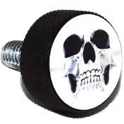 Harley Twin Cam Air Cleaner Bolt - Black Billet Ghost Skull