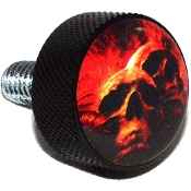 Harley Twin Cam Air Cleaner Bolt - Black Billet Grave Skull