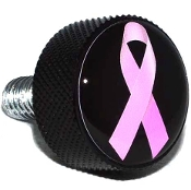 Harley Twin Cam Air Cleaner Bolt - Black Billet Ribbon Pink/ Blk