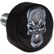 Harley Twin Cam Air Cleaner Bolt - Black Billet Silver Skull