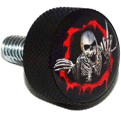 Harley Twin Cam Air Cleaner Bolt - Black Billet Skeleton - Red