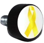 Harley Twin Cam Air Cleaner Bolt - Black Billet Ribbon Yellow W