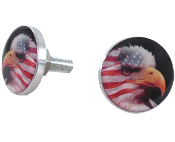 Polished Billet License Frame Bolts - American Eagle - Set of 2