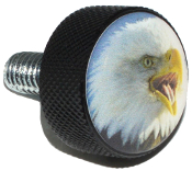 Harley Twin Cam Air Cleaner Bolt - Black Billet Eagle Screaming