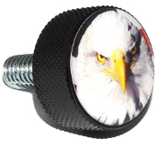 Harley Twin Cam Air Cleaner Bolt - Black Billet Eagle - Bald