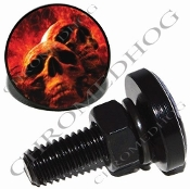 Sm Black Billet License Plate Bolts - Grave Skull