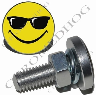 Sm Silver Billet License Plate Bolts - Smiley Shades