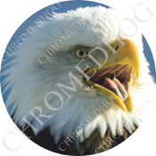 Premium Round Decal - Eagle - Screaming R