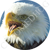 Premium Round Decal - Eagle - Screaming L