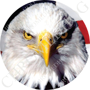 Premium Round Decal - Eagle - Bald