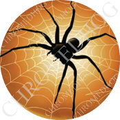 Premium Round Decal - Spider